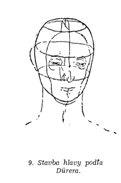 model-hlavy-na-kreslenie--podľa-Durera