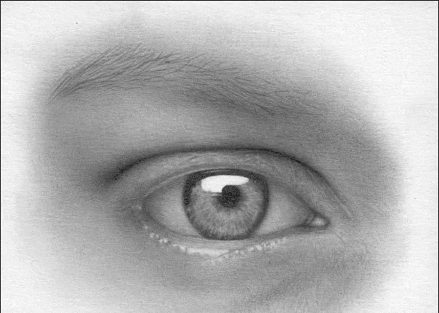 Kreslenie oka