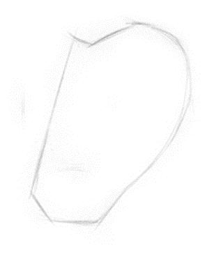 kreslenie-ucha-obrazok4