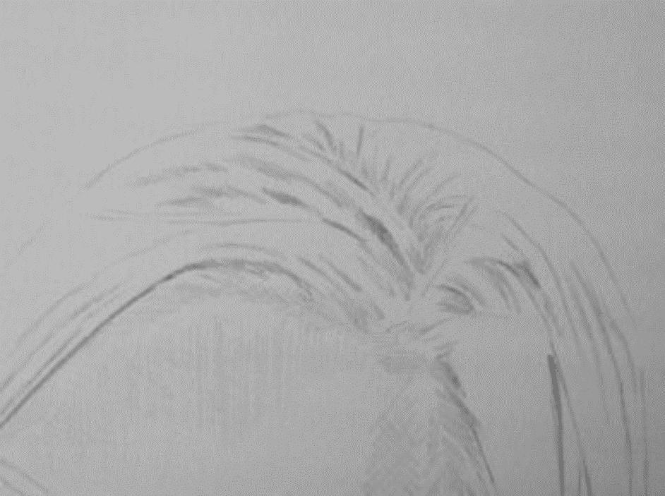 kreslenie-vlasov-obrazok1